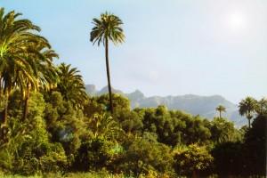 Gran Canaria Rundreisen