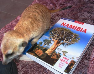 Planung Namibia Rundreise