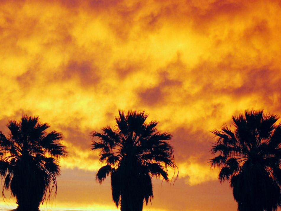 Namibia Sundown