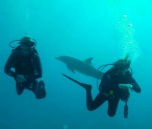 Tauchen zwischen Bali und Lombok